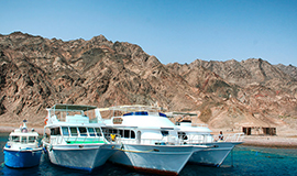 Dahab Discovery (Sea scope & Boat trip)